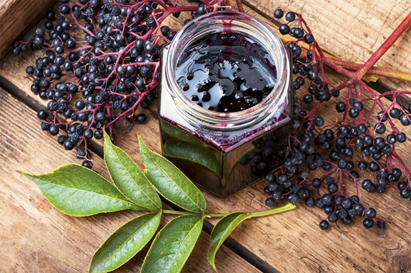 My Favorite Immune Supplement:  Elderberry